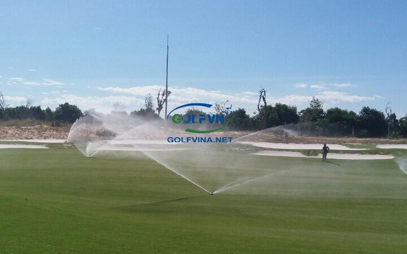 tưới nước sân golf