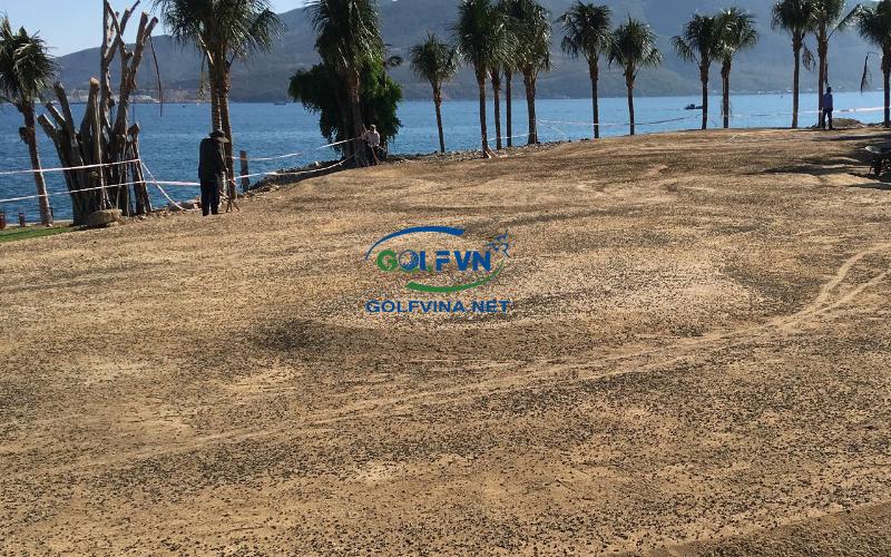 Bón phân sân golf