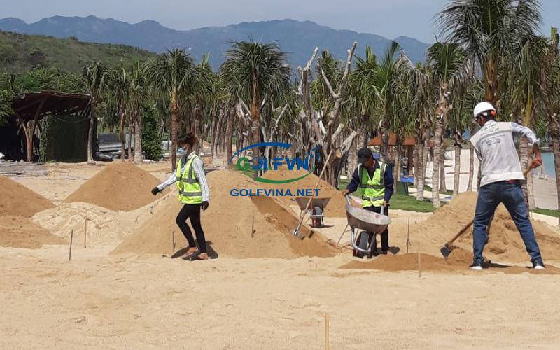 thi công cát sân golf